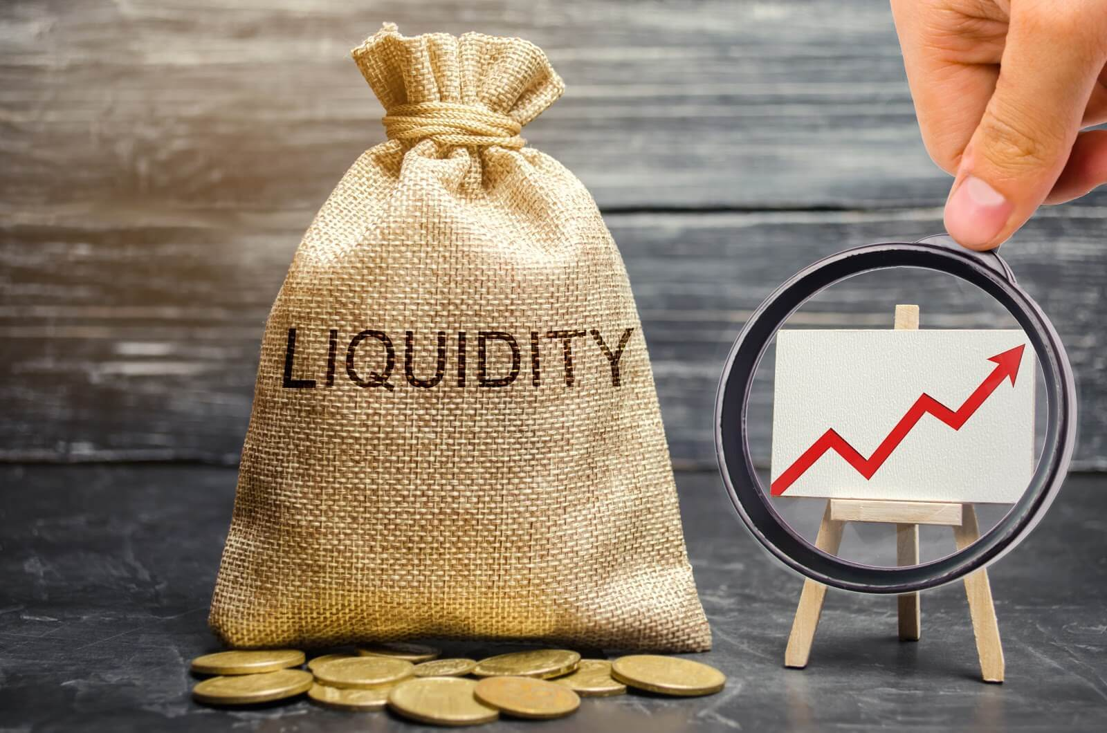 What are Liquid Funds?